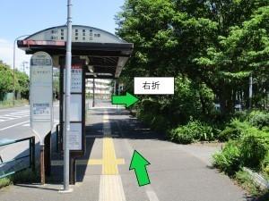 10haginohara.jpg