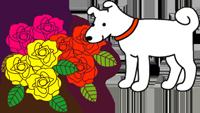 犬と薔薇-blog.png
